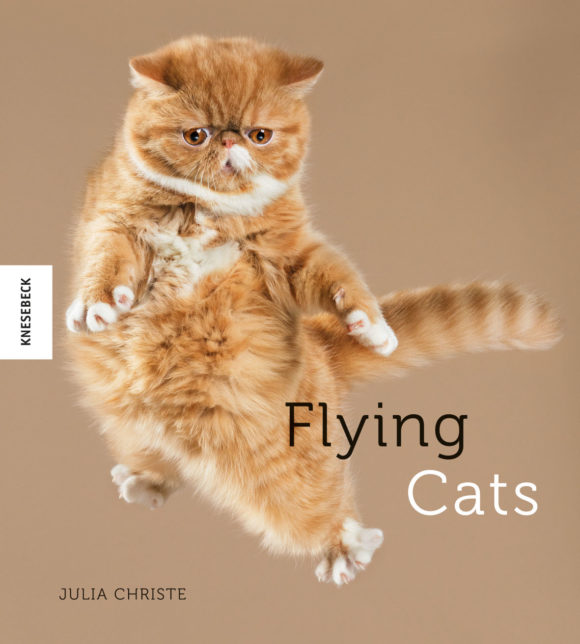 191-3_cover_flying-cats_2d_web