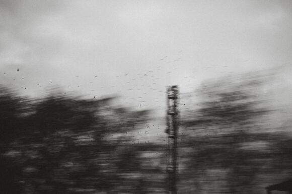 © Noirdebleu