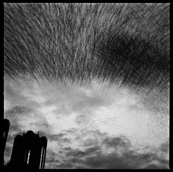 Reims, la cathédrale, 1989 © Gérard ROndeau