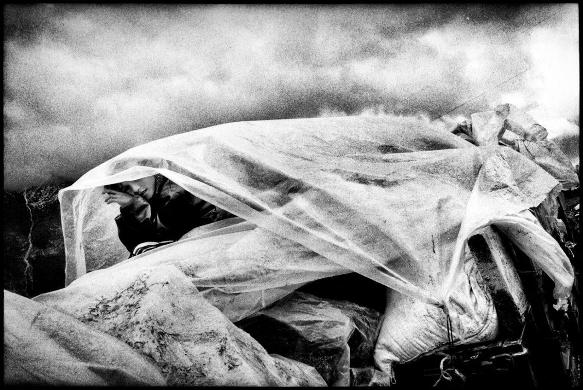 © Alain Keler