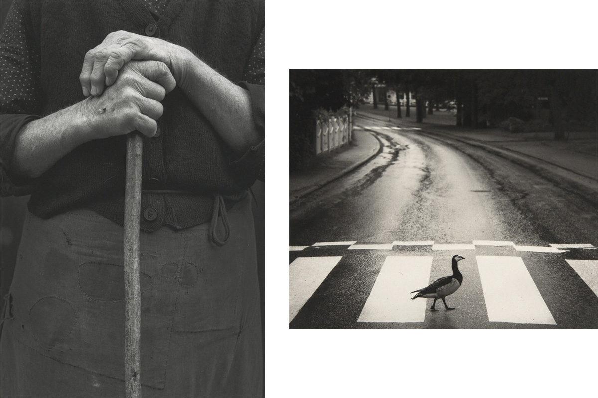 © Pentti Sammallahti, courtesy Galerie Camera Obscura