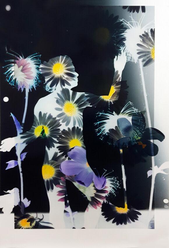BaptisteRabichon__fisheye-GalerieParis-Beijing