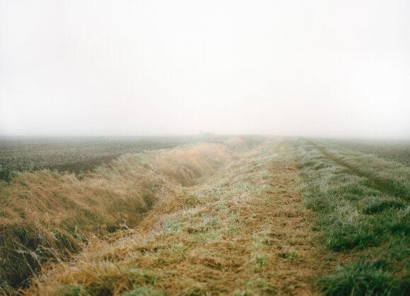 © Dorothée Nowak