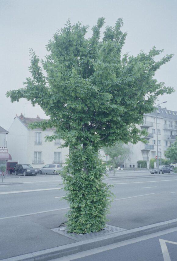 © Peter Tillessen