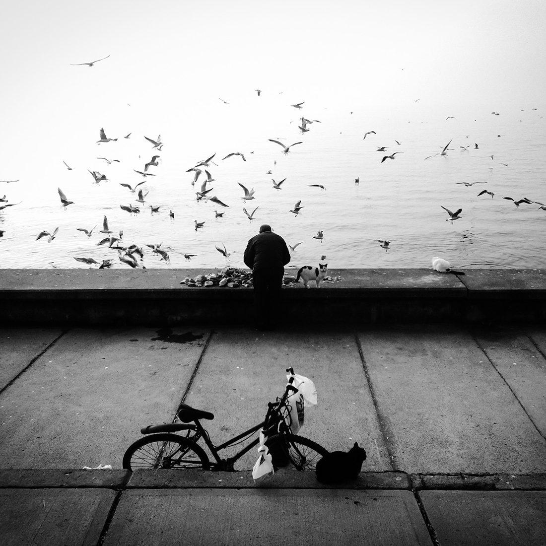 © Sevil Alkan