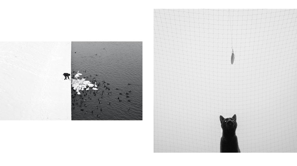 marcinryczek_photography-insta