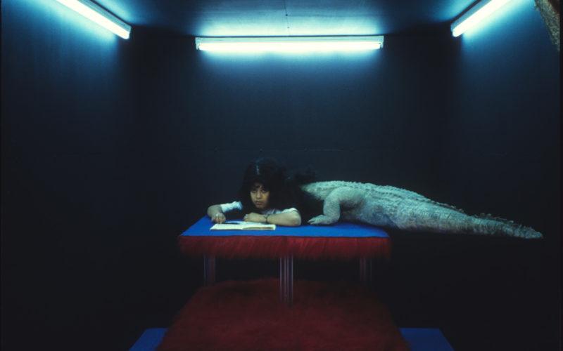 © Dolorès Marat / courtesy Galerie Françoise Besson
