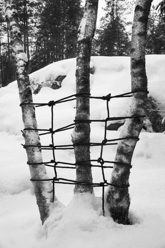 © Anna Reivilä