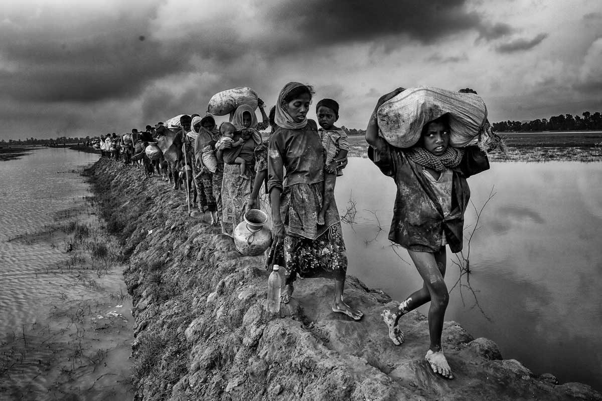 © Mushfiqui Alam