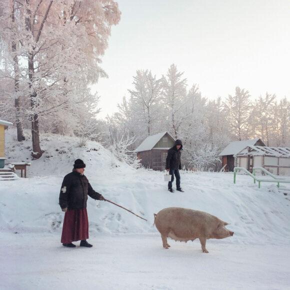 © Dmitri Markov