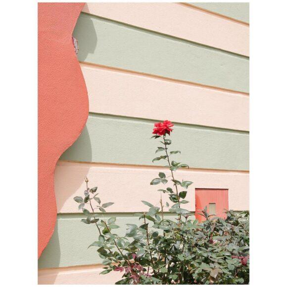 © Margarida Reis Pereira / Instagram