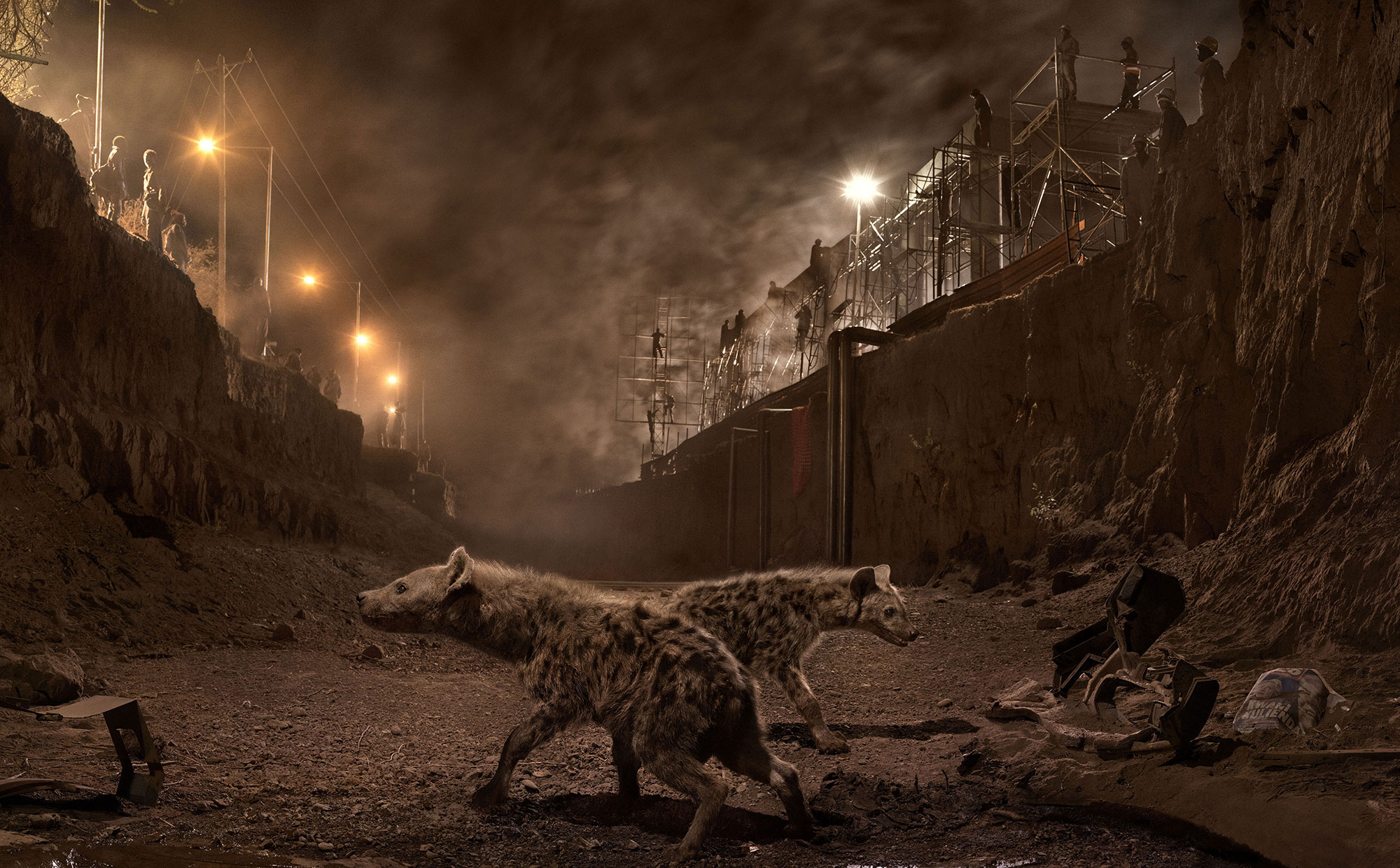 « This Empty World » : un monde qui sombre