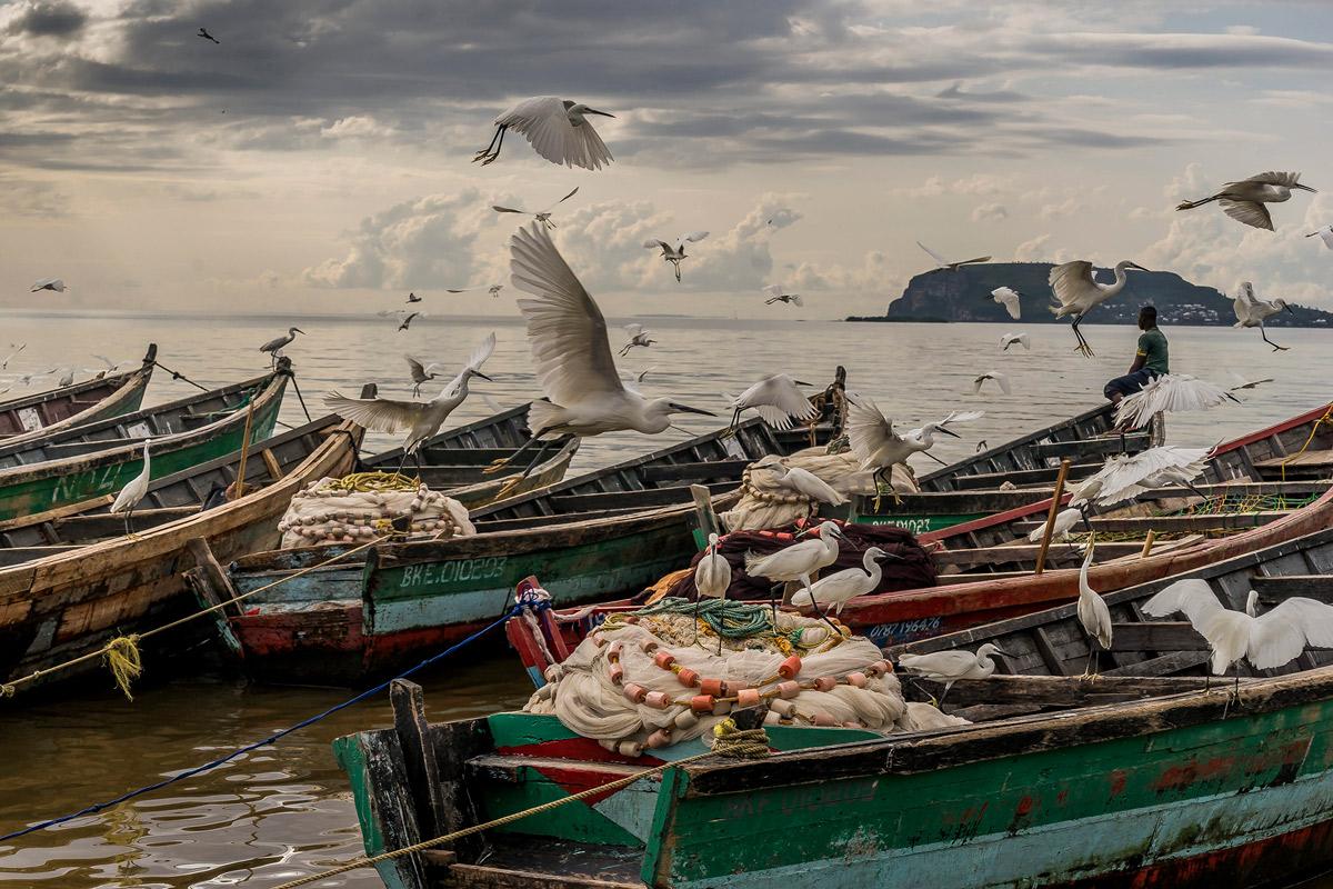 Visa pour l'image 2019 : un état des lieux de notre monde