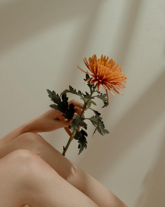 © Rosemarie Yang