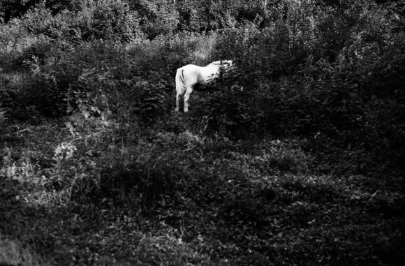 © Aurélie Monnier