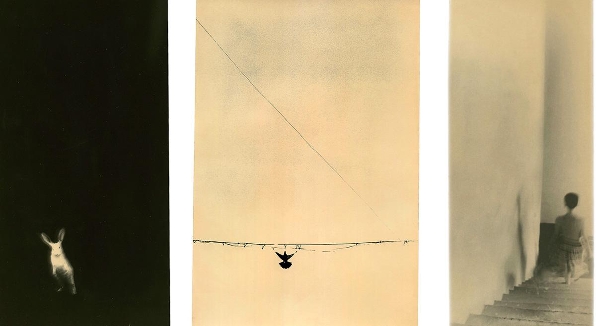 « So it goes », un ouvrage délicat récompensé par le Prix Nadar