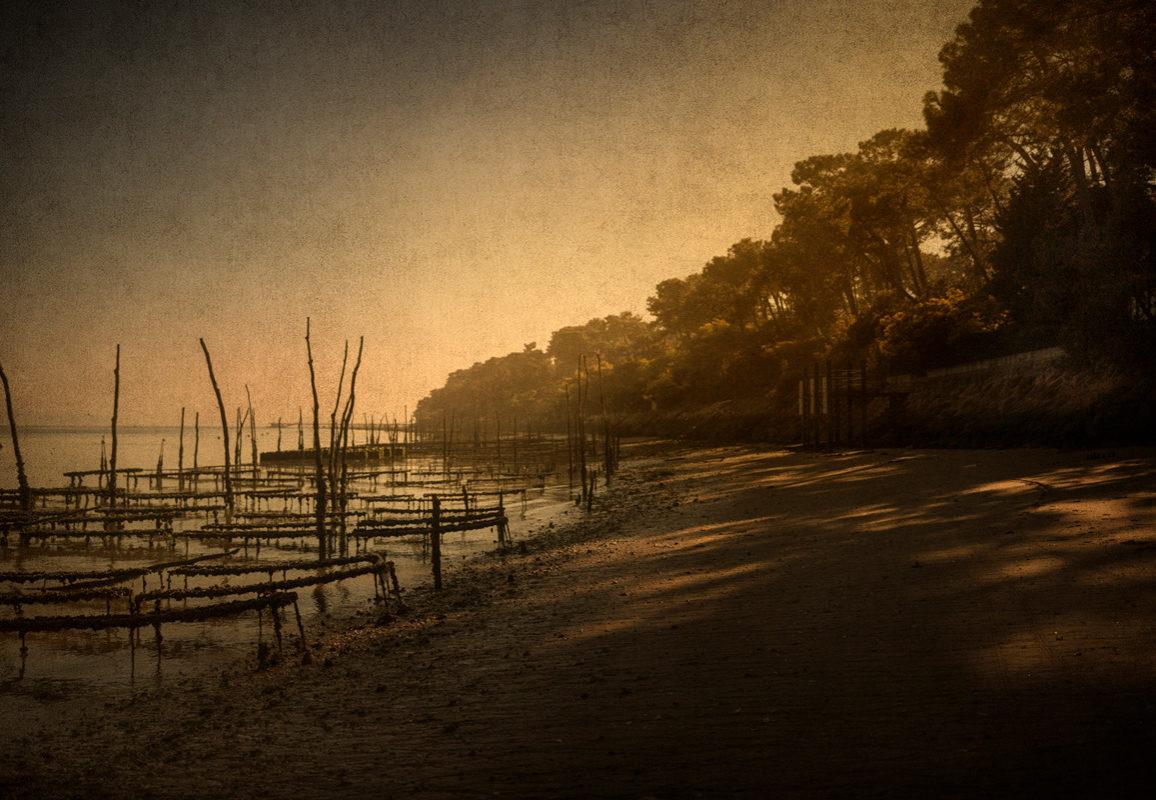 © Nicolas Seurot