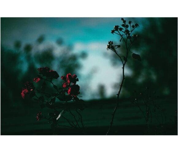© mykeyin / Instagram