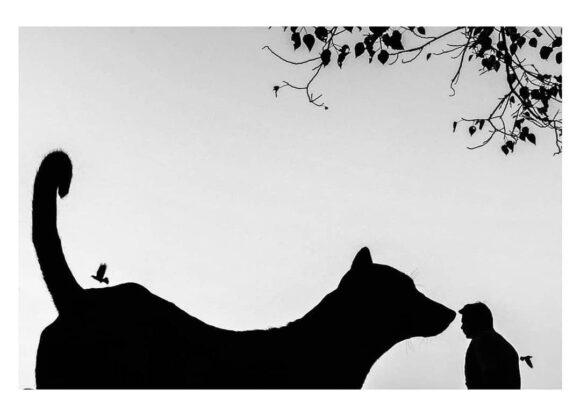 © Raj Sarkar / Instagram