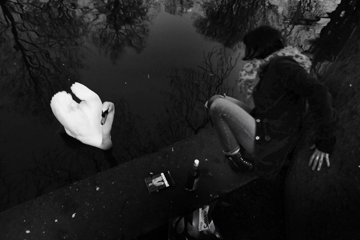 © Kamila Stepien