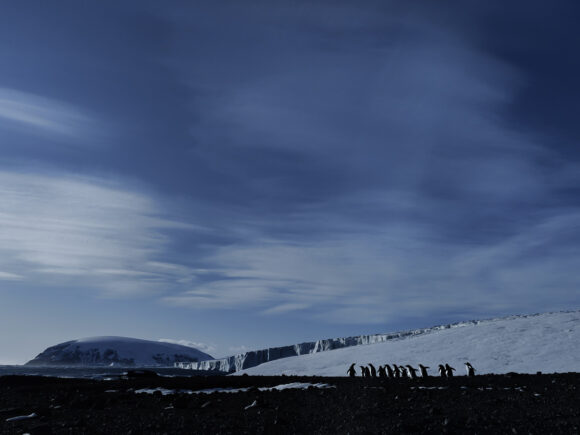 © Michaela Skovranova / OPPO x National Geographic