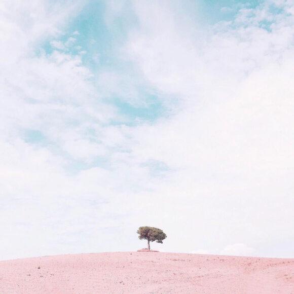 ©Judith Sayrach
