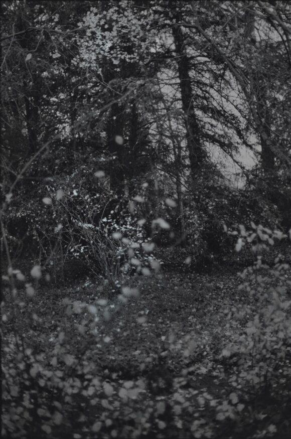 © Anne-Lise Broyer