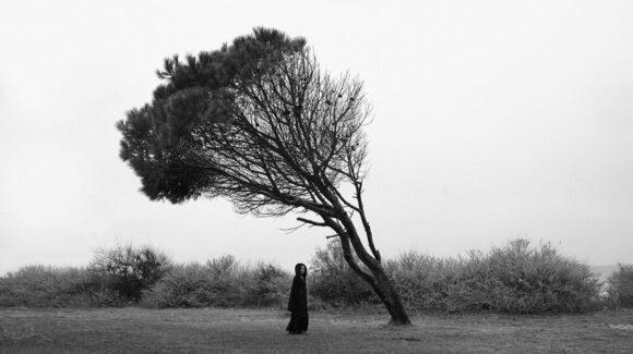 © Sema Yaman