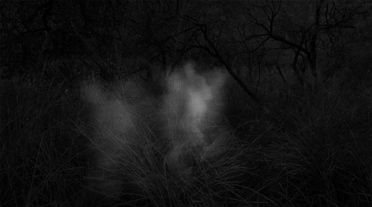 © Alex Turner