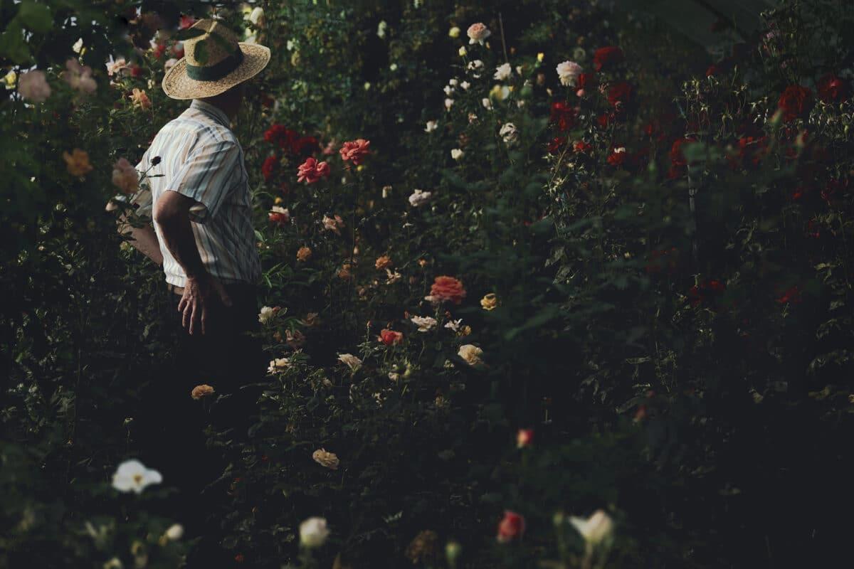 """""""Le jour sans fin"""" © Alessia Rollo"""