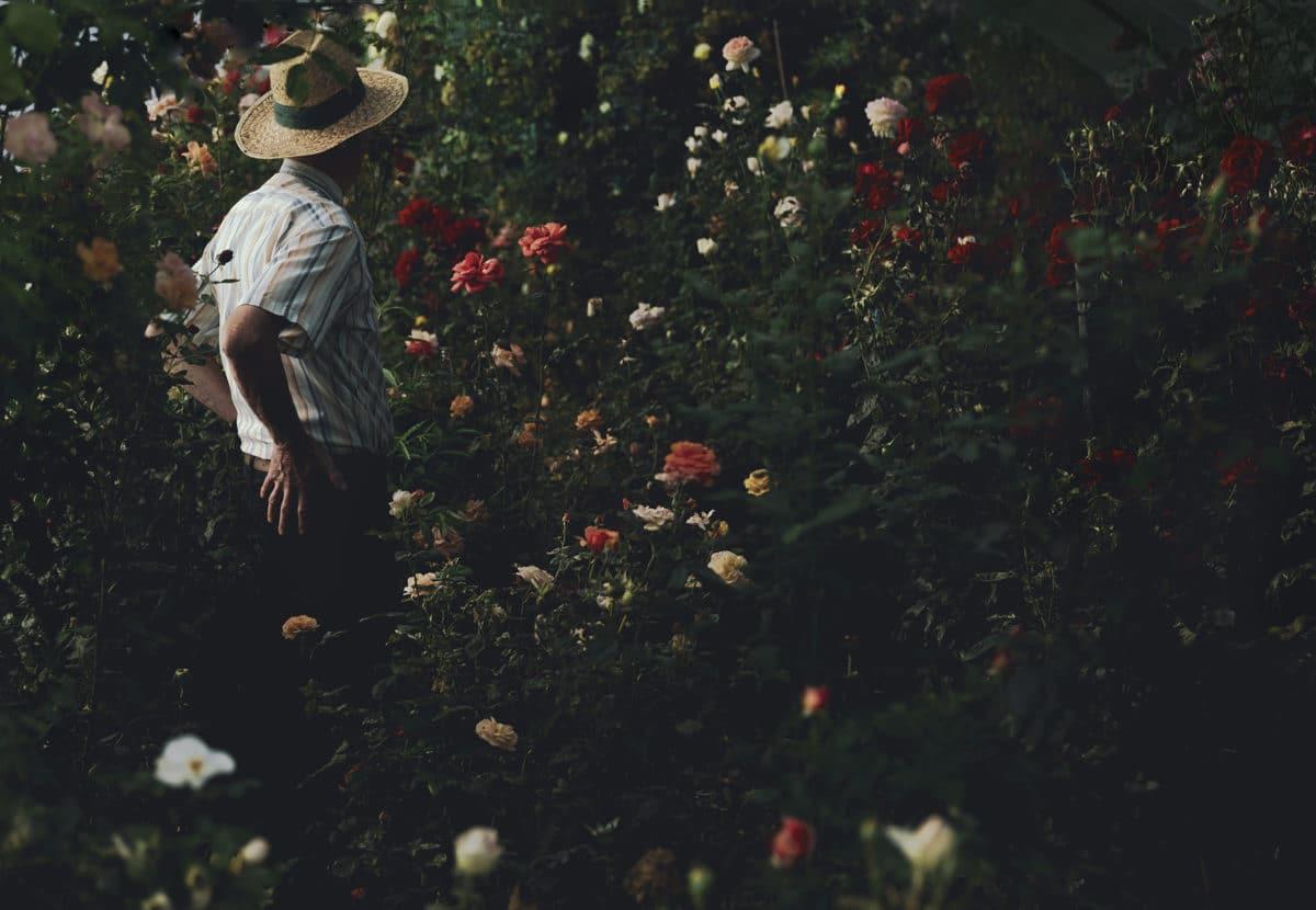 Le jour sans fin © Alessia Rollo