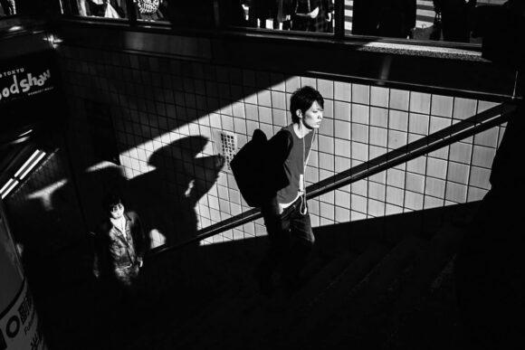 © David Le Tellier