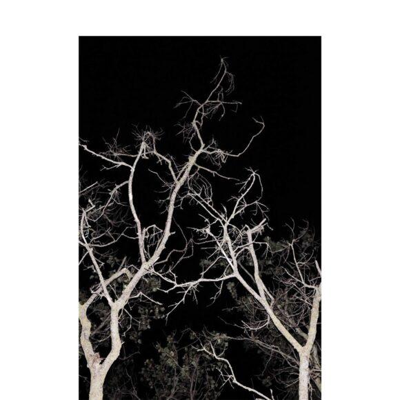 © Romain Bagnard