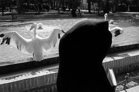 © Matthieu Chazal