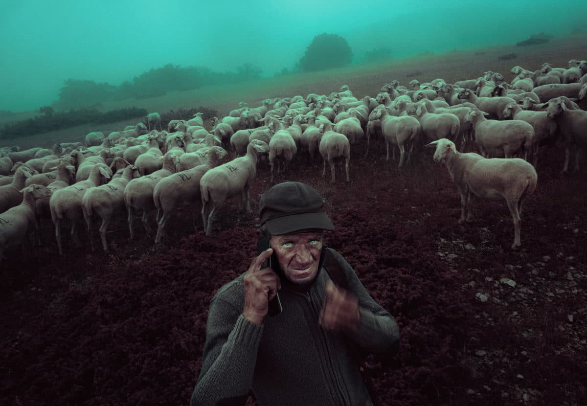 © Francesco Lopazio