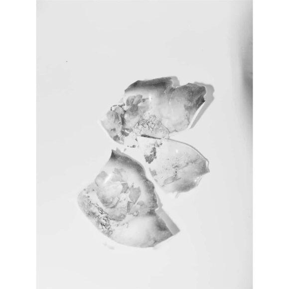 Samantha-Lomprez--fisheye-montage-1